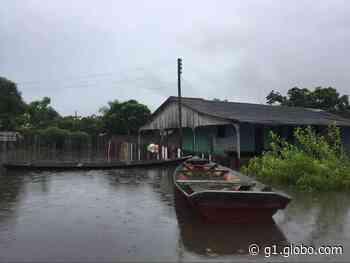 Rio Branco sobe e atinge cota de alerta para inundação em Caracaraí, no Sul de RR - G1
