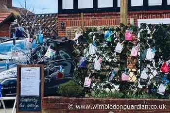 This tree in Morden offers face masks to passers-by - Wimbledon Guardian