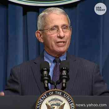 Anthony Fauci tells Congress new coronavirus cases could reach 100,000 a day without changes