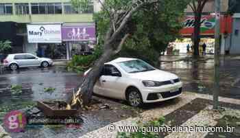 Temporal causa destruição em Foz do Iguaçu; veja as fotos - Guia Medianeira