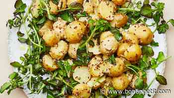 79 Summer Side Dishes For Park Picnics and Backyard Barbecues