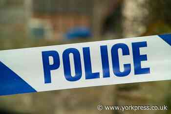 Teen sprayed with incapacitant and shot with BB gun in York street attack