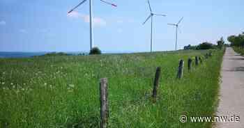 Stadt Salzkotten will Feldgrenzen mit Bauern diskutieren - Neue Westfälische