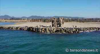Ladispoli, a Torre Flavia pescatori abusivi e cinghiali - BaraondaNews