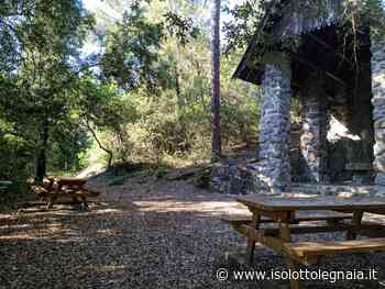 Parco del Sant'Antonio, la meraviglia abbandonata dell'Impruneta - Isolotto Legnaia Firenze - Isolotto Legnaia