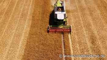Bauernverband informiert über Getreideernte - Süddeutsche Zeitung