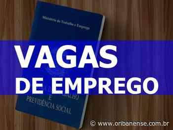 Sine de Linhares oferece 17 oportunidades de emprego - O Ribanense