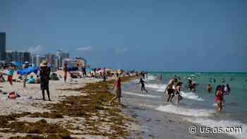 ¿Qué playas de Florida están abiertas y cuáles están cerradas? - AS USA
