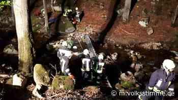 Ilsenburg: Rettungseinsatz im nächtlichen Ilsetal - Volksstimme