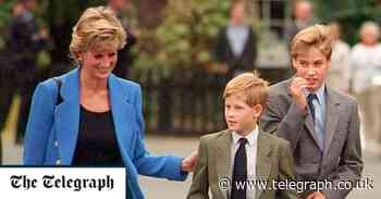 A tale of two princes: what William and Harry's vastly different styles say about them - Telegraph.co.uk