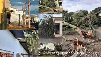 Ventos causam quedas de árvores e placas e destelhamentos em Forquilhinha - Forquilhinha Notícias