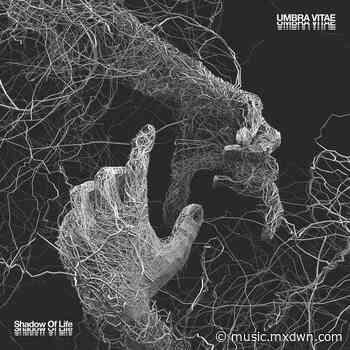 Album Review: Umbra Vitae – Shadow of Life - mxdwn.com