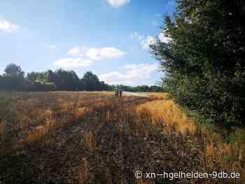 Zwei Hektar Gerstenfeld bei Flächenbrand in Bruchsal zerstört - Hügelhelden.de