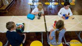 Gavin Williamson to announce schools overhaul when pupils return after summer