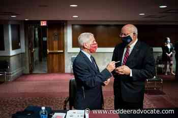 Fauci, CDC chief raise concerns about full airline flights - Red Deer Advocate