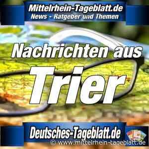 Trier - Kunst am Bau: Schrei-Pilze für Kita in Filsch - Mittelrhein Tageblatt