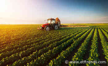 Agriculture ETFs Jump After USDA Reports Smaller Planted Acreage - ETF Trends