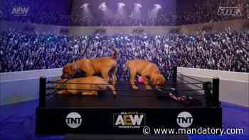 AEW Fyter Fest Night Two Will Feature A Puppy Battle Royale