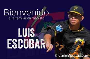 Luis Escobar es anunciado como nuevo refuerzo para los Caimanes de Barranquilla - Diario La Libertad