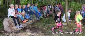 Umweltbildung: Abenteuer für Kinder im Stadtwald - Nordwest-Zeitung
