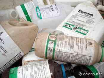 Embalagens de agrotóxicos serão coletadas nessa sexta em Santa Maria do Herval - O Diário