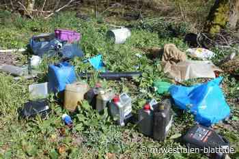 Landkreis Holzminden kämpft gegen illegale Müllentsorgung: Altöl gefährdet Trinkwasser - Westfalen-Blatt