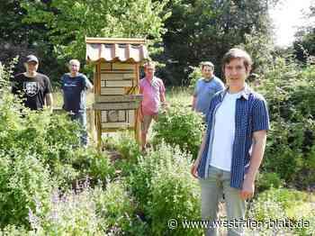 Wildbienenhotel in bunter Nachbarschaft - Westfalen-Blatt