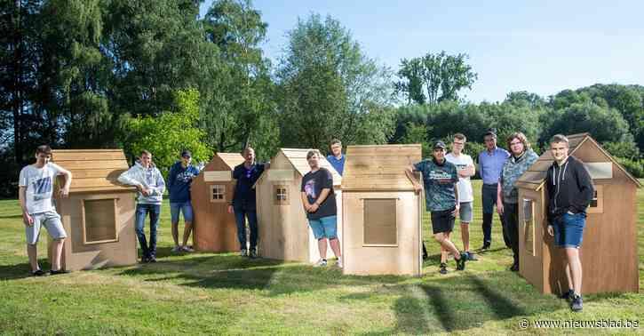 Leerlingen maken houten huisjes voor provincie