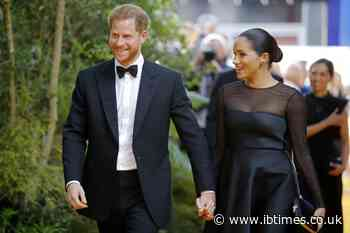 Meghan Markle and Prince Harry frustrated without social media handles?