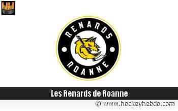 Hockey sur glace : D2 : Arrivée offensive à Roanne - Transferts 2020/2021 : Roanne (Les Renards) - hockeyhebdo Toute l'actualité du hockey sur glace