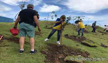 Lions Clube faz plantio de árvores em Parque em Mogi das Cruzes - Diário do Estado de S. Paulo