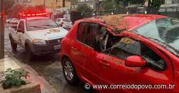 Temporal provoca queda de árvore e veículo fica danificado em Porto Alegre - Jornal Correio do Povo