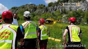 Malore mentre cerca i funghi: deceduto 78enne di Tavagnacco - Nordest24.it