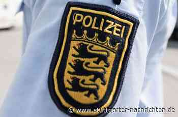 Attacke in Bietigheim-Bissingen - Hundebesitzer verletzt Paketboten und Frau mit Reizstoff - Stuttgarter Nachrichten