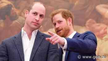 Royals: Prinz William + Prinz Harry melden sich auf Twitter zu Wort - Gala.de
