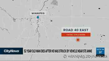 Man dies after being struck by a vehicle near Ste. Anne - CityNews Winnipeg