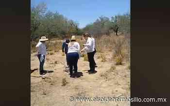 Madres Buscadoras localizan el cuerpo de un hombre en Caborca - El Sol de Hermosillo