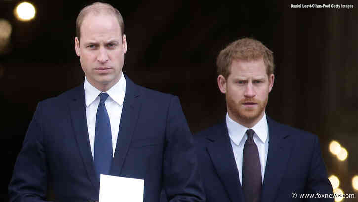 Prince William 'was really hurt' after Prince Harry's shocking 'Megxit' announcement, royal expert claims - Fox News