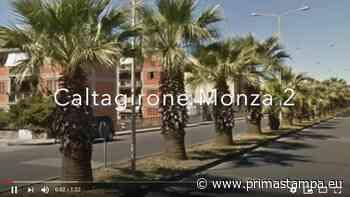 """Caltagirone, intervista diventa video divertente """"Caltagirone Monza 2"""" - PrimaStampa.eu"""
