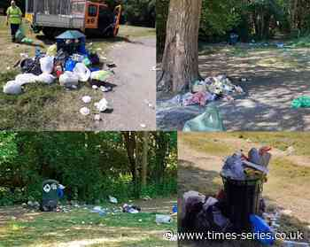 'Unprecedented' amount of litter in Barnet parks - Times Series