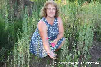 Auf dem Hügel wachsen Blumen, die Gisela Hochmuth nie gesät hat: Aus Dornröschenschlaf erwacht - Westfalen-Blatt