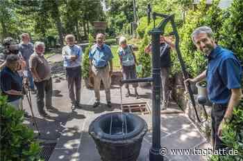 Frisches Wasser aus dem alten Brunnen für die Blumen auf Hölderlins Grab - Schwäbisches Tagblatt