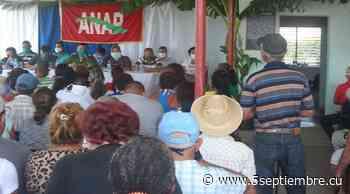 Campesinos de Palmira en Cienfuegos: confianza en producir más - 5 de Septiembre