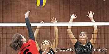 Wer später dran ist, hat manchmal bessere Chancen - Volleyball - Badische Zeitung - Badische Zeitung