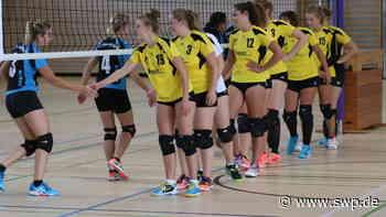 Volleyball in der Region: Verband: Ein Trainingsbetrieb wird noch nicht empfohlen - SWP