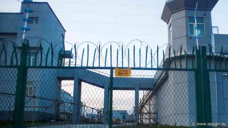 Uiguren-Verfolgung in China: US-Zoll beschlagnahmt menschliche Haarprodukte aus Zwangsarbeit - DER SPIEGEL