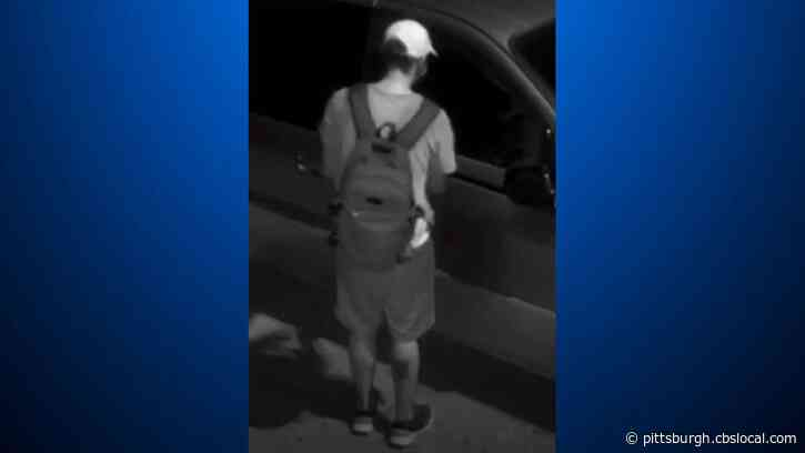 Mt. Lebanon Police Seek Public's Help Identifying And Locating Car Thief Suspect