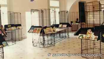 La biblioteca di Viadana riapre per scegliere i libri da leggere - La Gazzetta di Mantova