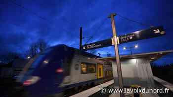 L'offre de trains à la gare de Templeuve-en-Pévèle se réduit encore à partir de samedi - La Voix du Nord