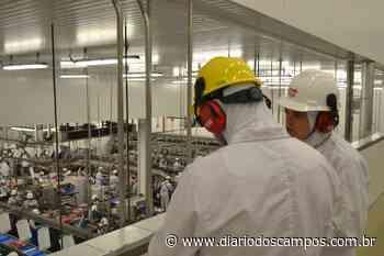 Diário dos Campos | Cooperativismo garante segurança para produtores dos Campos Gerais durante pandemia - Diário dos Campos